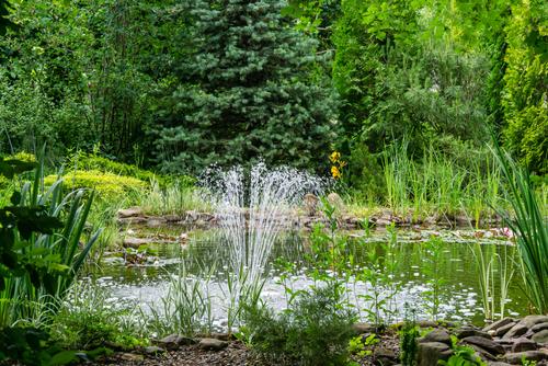 fontein vijver