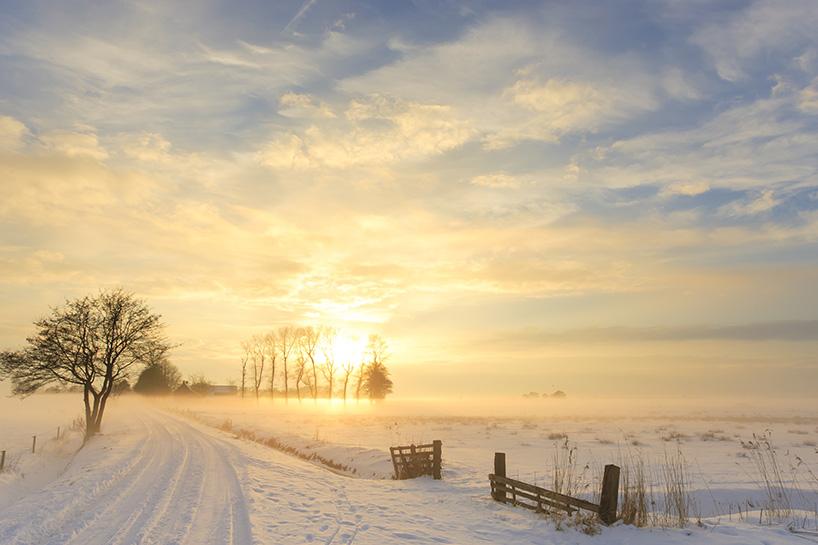 Nederlands landschap onder sneeuw